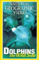 National Geographic's Dolphins: The Wild Side Trailer