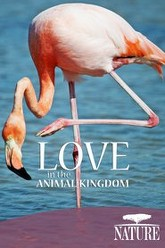 Nature: Love in the Animal Kingdom Trailer
