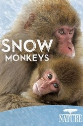 Nature: Snow Monkeys Trailer