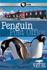 Penguin Post Office Trailer