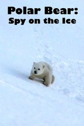 Polar Bear: Spy on the Ice Trailer