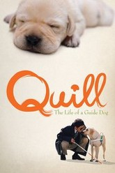 Quill:  The Life of a Guide Dog Trailer