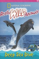 Really Wild Animals: Deep Sea Dive Trailer