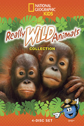 really wild animals - monkey business and other family fun Trailer