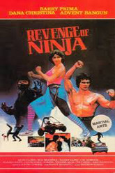 Revenge of the Ninja Trailer