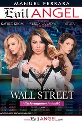Screwing Wall Street: The Arrangement Finders IPO Trailer
