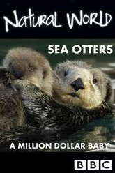 Sea Otters: A Million Dollar Baby Trailer