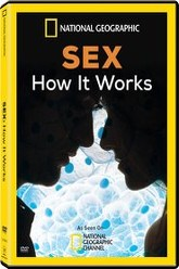 Sex How It Works Trailer
