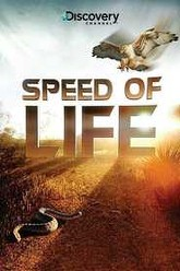 Speed of Life Trailer