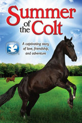 Summer of the Colt Trailer