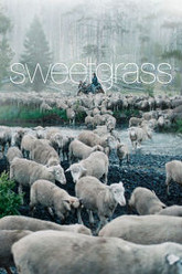 Sweetgrass Trailer