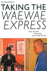 Taking the Waewae Express Trailer