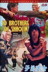 Ten Brothers of Shaolin Trailer
