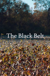 The Black Belt Trailer