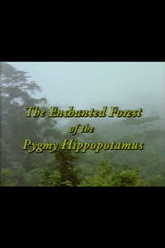 The Enchanted Forest of the Pygmy Hippopotamus Trailer