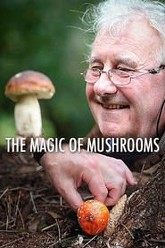 The Magic Of Mushrooms Trailer