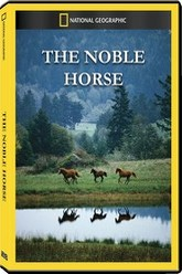 The Noble Horse Trailer