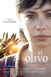 The Olive Tree Trailer