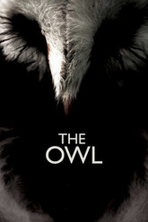 The Owl Trailer
