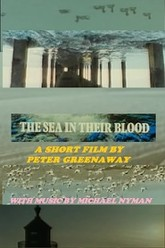 The Sea in Their Blood Trailer