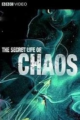 The Secret Life Of Chaos Trailer