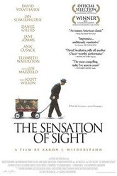 The Sensation Of Sight Trailer