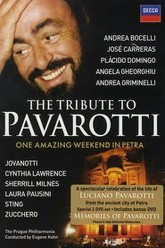 The Tribute to Pavarotti One Amazing Weekend in Petra Trailer