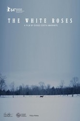 The White Roses Trailer