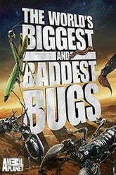 The World's Biggest and Baddest Bugs Trailer