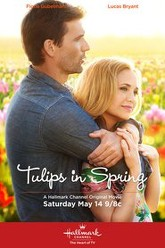 Tulips in Spring Trailer