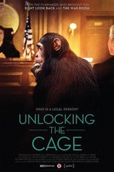 Unlocking the Cage Trailer