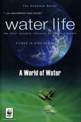 Water Life A World of Water Trailer