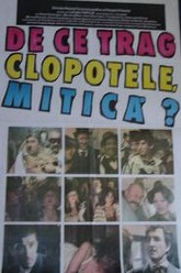 Why Are the Bells Ringing, Mitica? Trailer