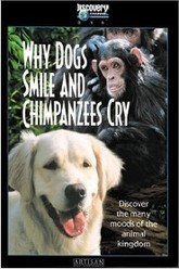Why Dogs Smile and Chimpanzees Cry Trailer