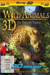 Wild Animals 3D Trailer