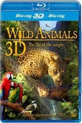 Wild Animals: The Life of the Jungle Trailer