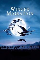 Winged Migration Trailer