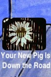 Your New Pig Is Down the Road Trailer